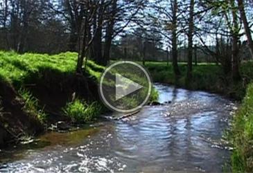 Miniature video tille bassin versant